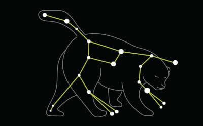 Star constellation Ursa Major